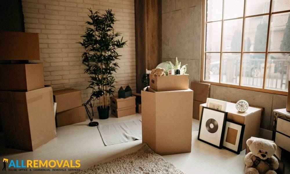 house moving trean - Local Moving Experts