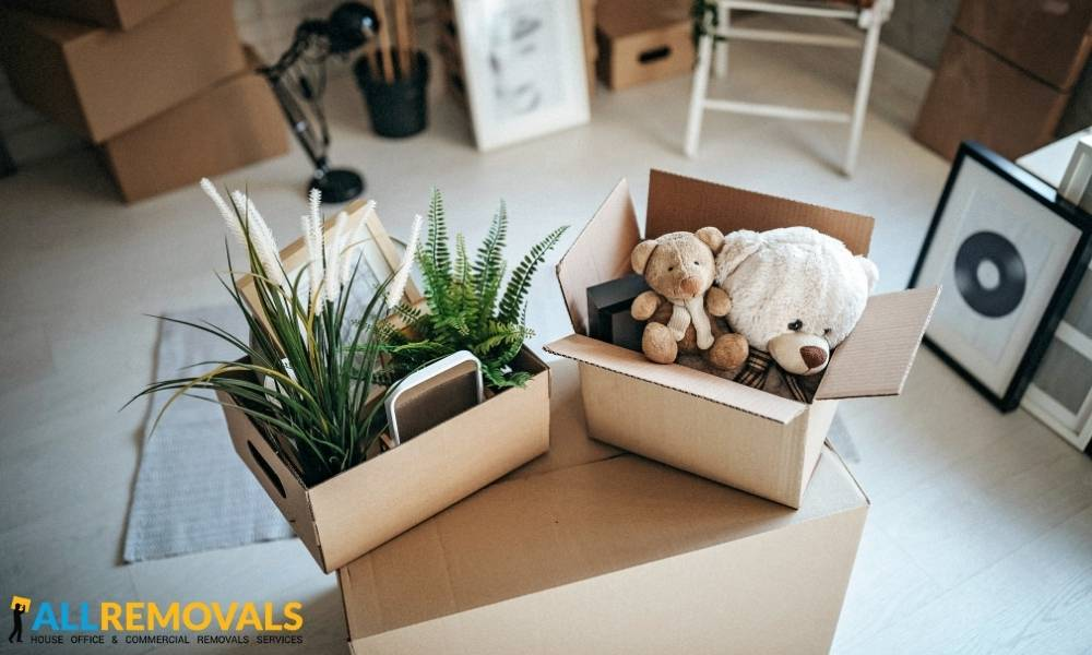 house removals castlejordan - Local Moving Experts