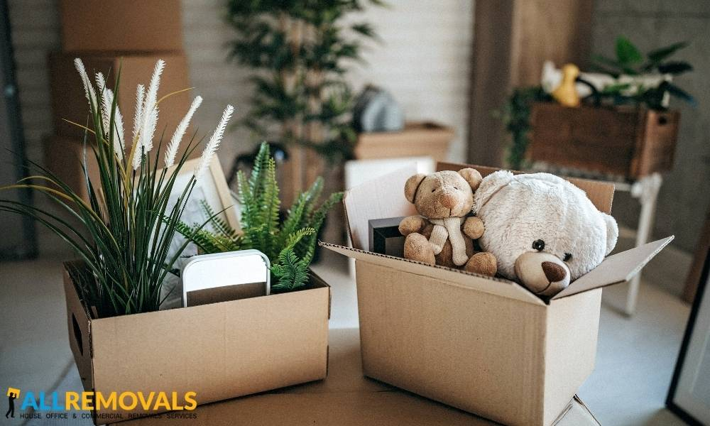house removals tirneevin - Local Moving Experts