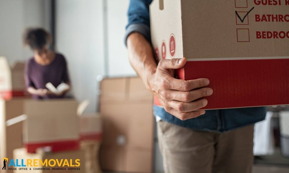 removal companies tirneevin - Local Moving Experts